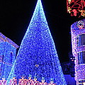Lighted Xmas Tree Walt Disney World by Thomas Woolworth