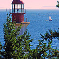 Lighthouse And Sailboats by Randy Harris
