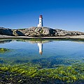 Lighthouse And Tide Pool by David Nunuk