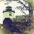 Lighthouse  by Karol Livote