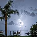 Lighting In The Backyard  by Stephen Whalen