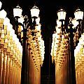 Lights by Caroline Lomeli