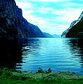 Ligth Fjord Norway by Colette V Hera  Guggenheim