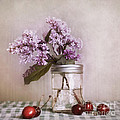 Lilac And Cherries by Priska Wettstein