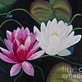 Lillies And Frog by Janet McDonald