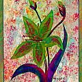 Lily Abstraction by Barbara Griffin