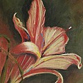 Lily by Kathleen Hartman