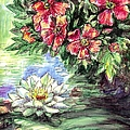 Lily-lotus Flower Paintings by Gordon Punt