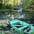 Lily Pond by Denise Keegan Frawley