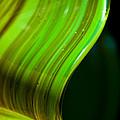 Lime Curl by Dana Kern