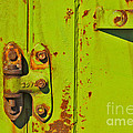 Lime Hinge by Stephen Mitchell
