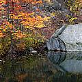 Lincoln Woods Autumn Boulders by Mike Nellums