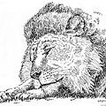 Lion-art-black-white by Gordon Punt