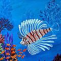 Lion Fish by Fram Cama