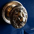 Lion Head Door Knob by Christiane Schulze Art And Photography
