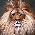 Lion Of Judah by Alma Pancir