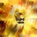Lion Of Judah by Maria Urso