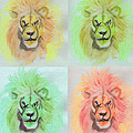 Lion X 4  by First Star Art