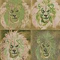 Lion X 4 One by First Star Art