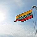 Lithuanian Tricolor by Ausra Huntington nee Paulauskaite