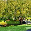 Little Bridge Over The River by Kaye Menner