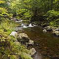 Little Carp River Falls 5 by John Brueske