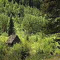 Little House - Vail by Madeline Ellis