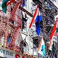 Little Italy In Color by Catie Canetti
