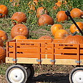 Little Orange Wagon by Kimberly Perry
