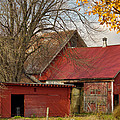 Little Red Farm by Dennis Comins