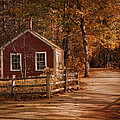 Little Red House by Robin-Lee Vieira