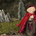 Little Red Riding Hood by Heidi Thrasher