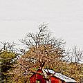 Little Red Shanty - No. 351 by Joe Finney