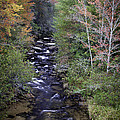 Little River - North Carolina Autumn Scene by Rob Travis