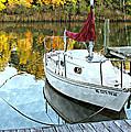 Little Sailboat by Lynn Jordan