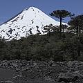 Llaima Volcano, Araucania Region, Chile by Martin Rietze