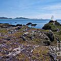 Llanddwyn Island by Meirion Matthias