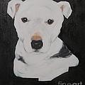 Lobo My Gentle Pitbull by Rachel Carmichael