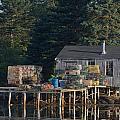 Lobster Shack Prospect Harbor by Dale J Martin