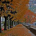 Locarno In Autumn by Joana Kruse