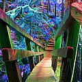 Log Bridges by Marie Jamieson
