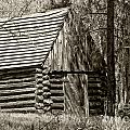 Log Building In The  Woods by Betty Depee