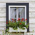 Log Home And Flower Box In The Window by David Chapman