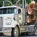 Logging Truck by Traci Cottingham