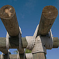 Logs Tied With Rope by Carl Purcell
