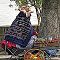 Lollipop Lady by Steve Harrington