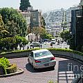 Lombard Street San Francisco by Carol Ailles