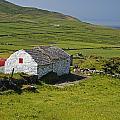 Lone Farmhouse On Mizen Head In West by Trish Punch