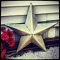 Lone Star Texas by Dana Coplin