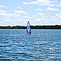 Lone Wind Surfer by Susan Herber